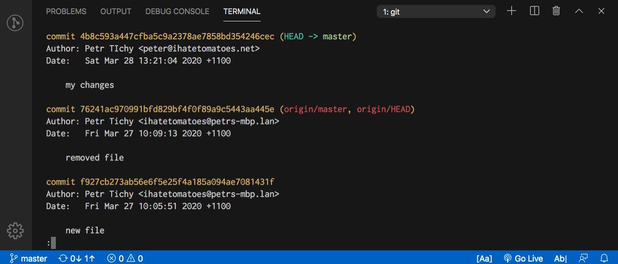 Git Tutorial for Beginners - Git Log