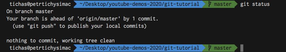 Git Tutorial for Beginners - Status